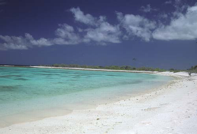 Kiritimati.png